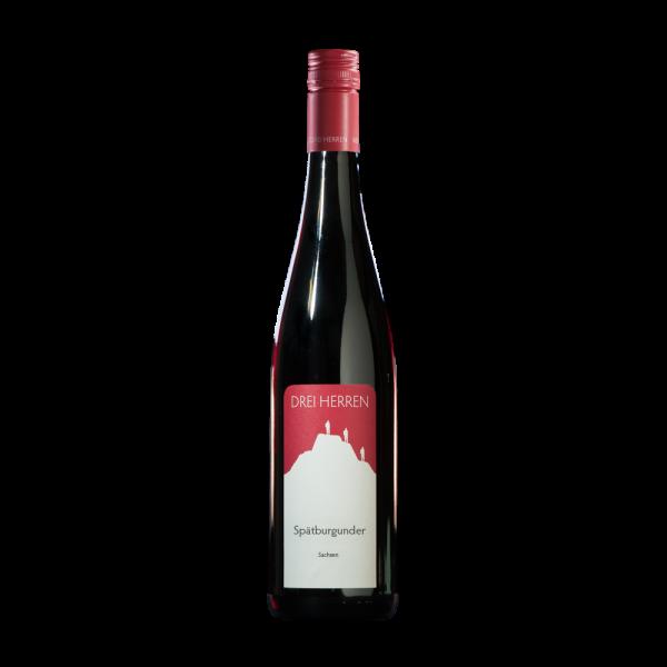Weingut DREI HERREN Rotwein Spaetburgunder