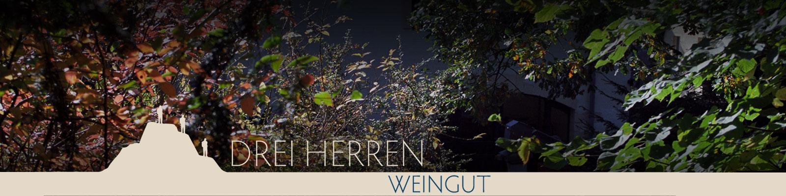 Header01_Weingut_1600x400