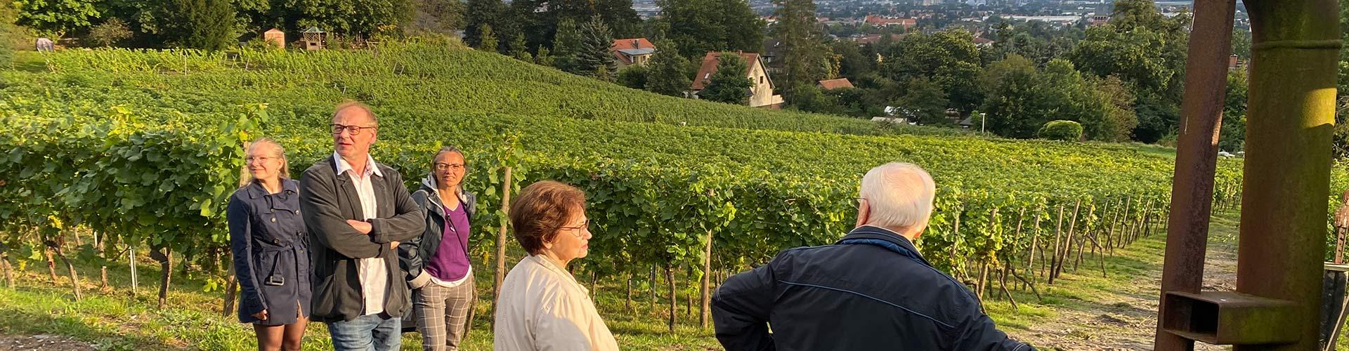 Spaziergang im herbslichen Weinberg auf dem Wein-und Kunstwanderweg