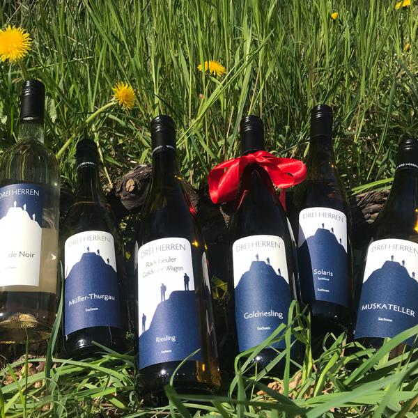 Angebot: Jungweinprobe, 11 Weine plus einen Wein gratis
